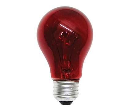A19 40W RED BULB